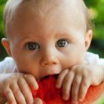 咀嚼力(そしゃくりょく)は健康維持に直結!をかみしめて